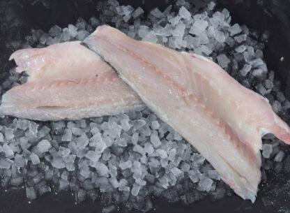 Sea Bass Filet 2
