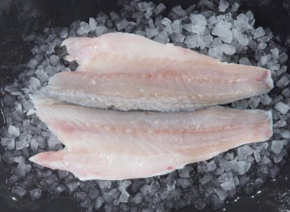 Sea Bass Filet 1