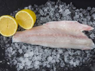 Single Sea Bass Filet